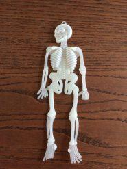 Csontváz - sötétben világító