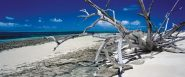 Schmidt Puzzle - Green Island, Queensland, Australia, 136 db