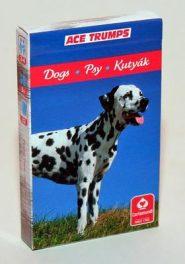 Kártyák Kedvenceink a kutyák