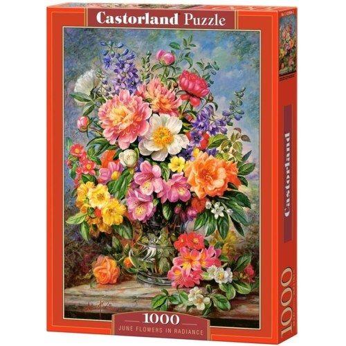 Castorland Puzzle - Júniusi virágok 1000 db