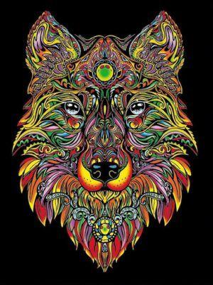 Colorvelvet Bársonykép 47x35 cm Farkas